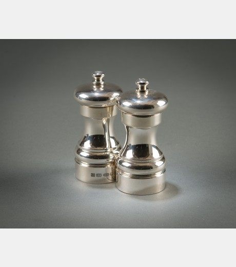 Contemporary Silver - Salt and Pepper Mill