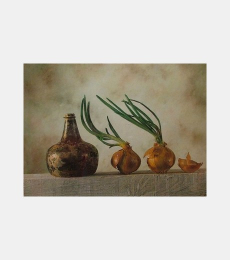 Daren Baker - Antique Vase and Onions