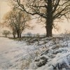 Martin Taylor - Winter Afternoon