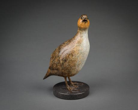 Richard Smith - Standing Partridge